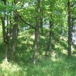 Pozostałości grodziska średniowiecznego z IX-XI w.